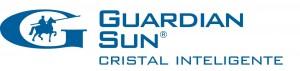 G_Sun_Logo_CMYK